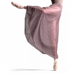La Boutique Danse - Capezio Dress 10649W